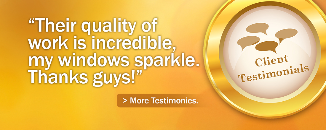 Testimonial: Their quality work is incredible my windows sparkle. Thanks Guys